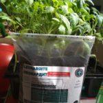 Органічне добриво Леонардит,  стимулятор росту,  покращувач грунту